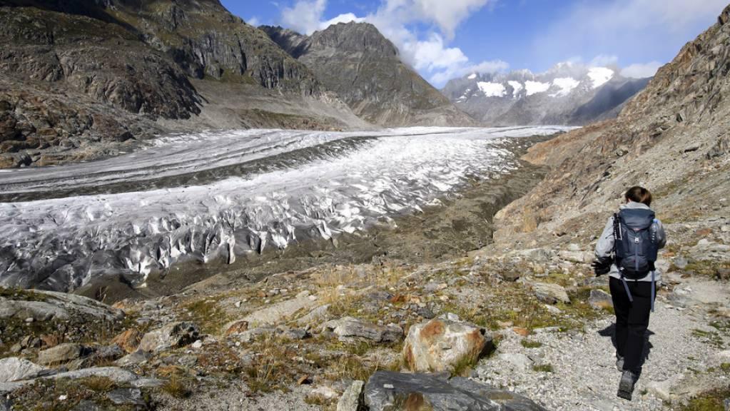 Der Aletschgletscher büsst in den unteren Lagen jedes Jahr 5 Meter ein. (Archivbild)