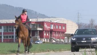 In Rupperswil scheut ein Pferd plötzlich, wirft die Reiterin ab und springt auf die Strasse. Die Frau wird ins Spital gebracht, das Tier muss wegen der schweren Verletzungen eingeschläfert werden.