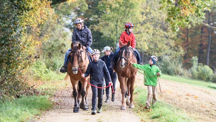 Ausritt mit den Kindern und den Pferden Pioggia, Cantina und Goldi