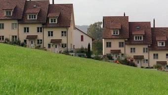 Das Komitee «Hauseigentümer für das Energiegesetz» zählt bereits gegen 100 Mitglieder.