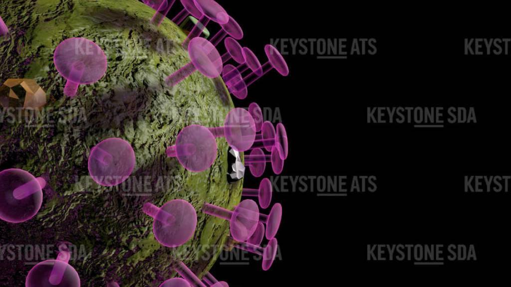 In der Schweiz und in Liechtenstein sind innerhalb eines Tages 40 neue Ansteckungen mit dem Coronavirus beim Bundesamt für Gesundheit (BAG) gemeldet worden.