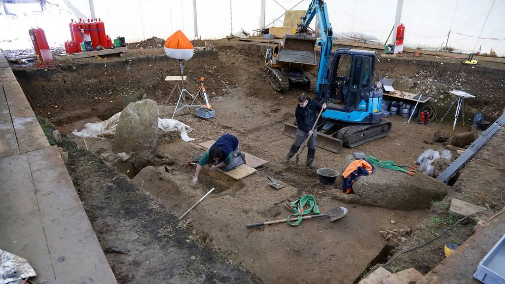 Ein Dolmengrab aus Oberbipp führt zum ältesten Laktosetoleranten der Welt