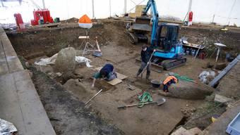 Die Bergung des Dolmengrabs in Oberbipp BE 2012 führte – via Umwege – zu Überbleibseln des ersten bekannten Laktosetoleranten in Spreitenbach AG.
