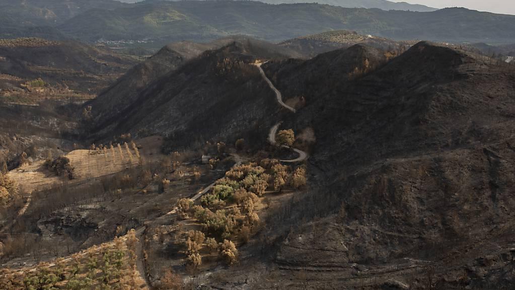 Verbrannt ist die Landschaft in der Nähe von Lalas, unweit von Olympia. Deutsche Feuerwehrleute und Mitglieder des Technischen Hilfswerks (THW) haben in Lalas ihr Camp für ihren Einsatz auf der Halbinsel Peloponnes. Foto: Socrates Baltagiannis/dpa