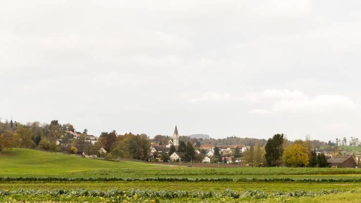 Blick auf das Dorf Wohlenschwil.