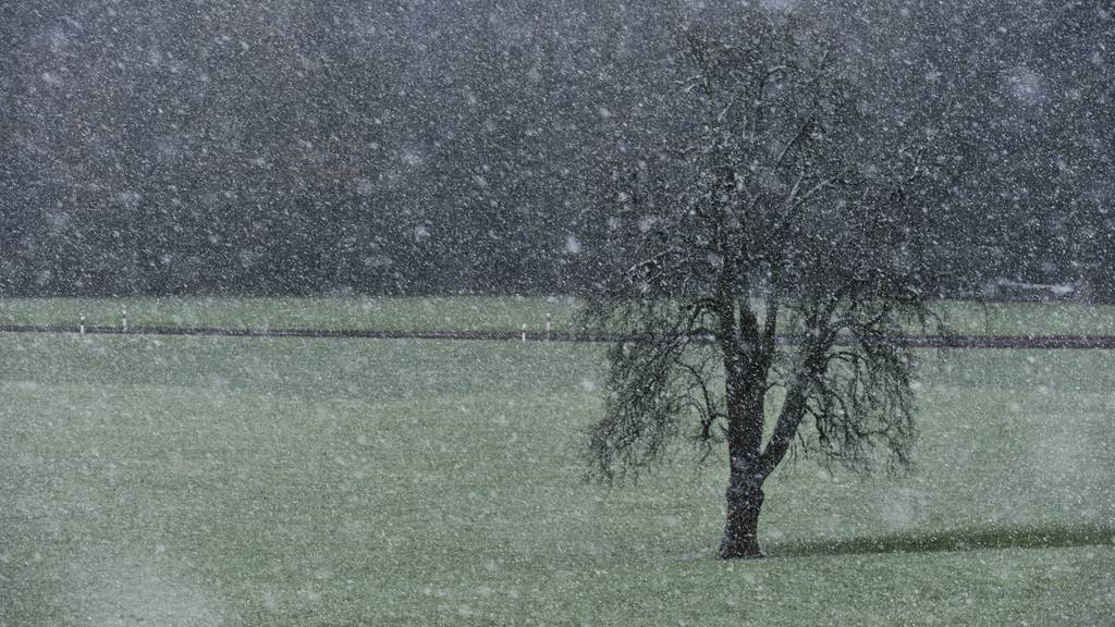 In Ostschweizer Bergen fällt über ein Meter Schnee
