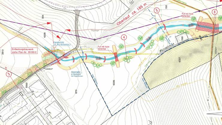 Auf der Wiese unterhalb des Säliwalds wird der Bach ausgegraben und erhält mit dem Renaturierungsprojekt einen mäandrierenden Verlauf (siehe Plan unten). Der Perimeter des Wildparks Mühletäli wird zugleich erweitert. Der Verein hat vor, auf der Wiese Waldrentiere weiden zu lassen