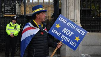 Ein Demonstrant und Brexit-Gegner vor dem britischen Parlament.