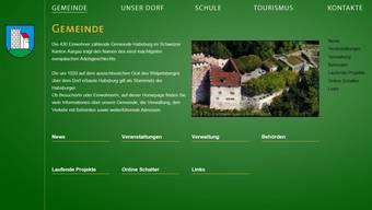 Grüner Auftritt der Homepage. ZVG