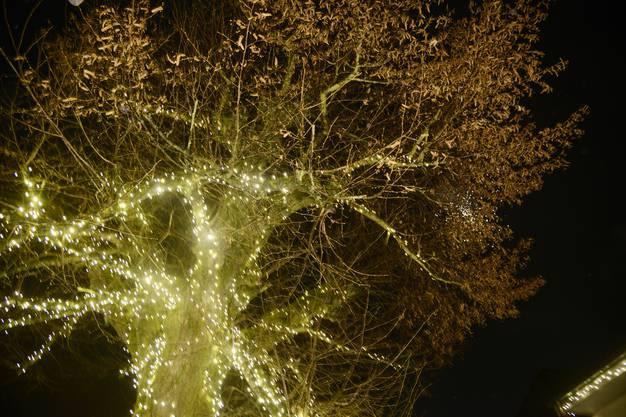 Lichterzauber St. Katharinen Solothurn