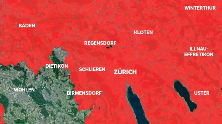 Ein Zeckenstich kann zur Hirnhautentzündung führen: Im Grossraum Zürich empfiehlt der Bund eine Impfung dagegen.