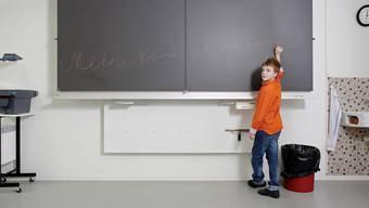 Nicht alle haben das Glück des 10-jährigen Maximilian aus dem Kanton Luzern: Seine Begabung wurde rechtzeitig entdeckt und gefördert.AZ Archiv/Mischa Christen