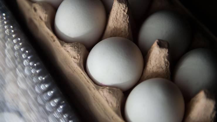 Auch Eier, die in die Schweiz importiert wurden und die der Handel anbietet, sind mit Rückständen des Insektizids Fipronil belastet. (Symbolbild)