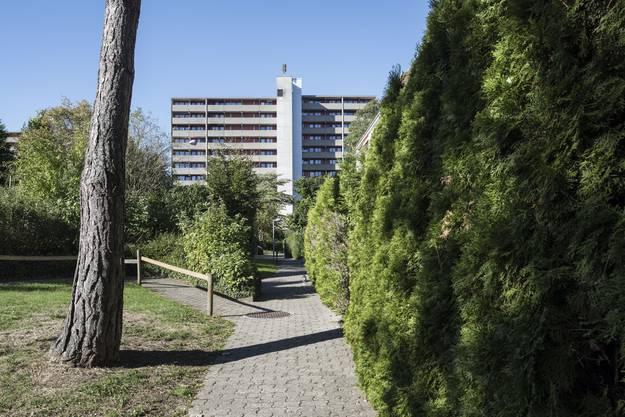 Wohnhäuser und Parkanalge der Siedlung Augarten aufgenommen am 25. September 2015 in Rheinfelden, Kanton Aargau. Die Siedlung Quellengarten, aufgenommen am 29. September 2015 in Rheinfelden, Kanton Aargau.