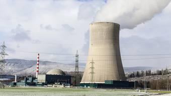 Auch die Grünen mochten einst die Atomkraft. Im Bild: das AKW Gösgen. (Archiv)
