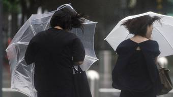 Die Niederschläge fielen an den meisten Orten gering aus. (Symbolbild)