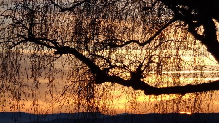 Sonnenuntergang - Abendstimmung Andreas Bichsel, Othmarsingen