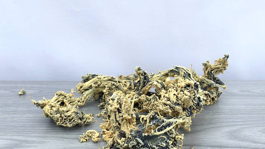 Unheimlich und in diesem Fall giftig: das Chemie-Experiment «Pharaoschlange»