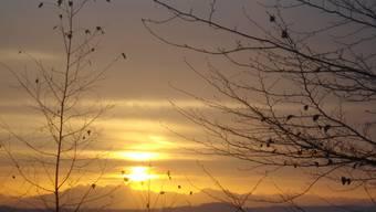 Sonnenbilder im Dezember 2013