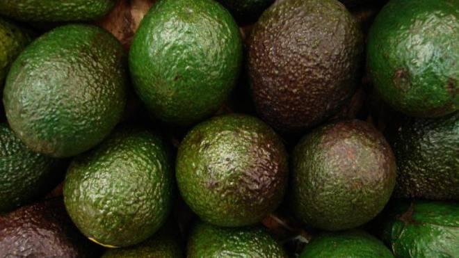 Avocados enthalten zwar sehr viel Gesundes, doch mit 217 Kilokalorien pro 100 Gramm auch viel Kalorien.