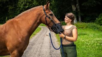 Lara Wetzel mit Linus: Der Freiberger benötigt eine Fressbremse, damit er nicht zu viel und nicht zu schnell Gras frisst.