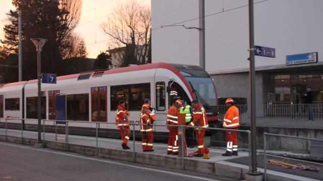 Die Züge der Seetalbahn konnten die Unfallstelle nur mit reduzierter Geschwindigkeit passieren, bis das Auto geborgen war. (Symbolbild)