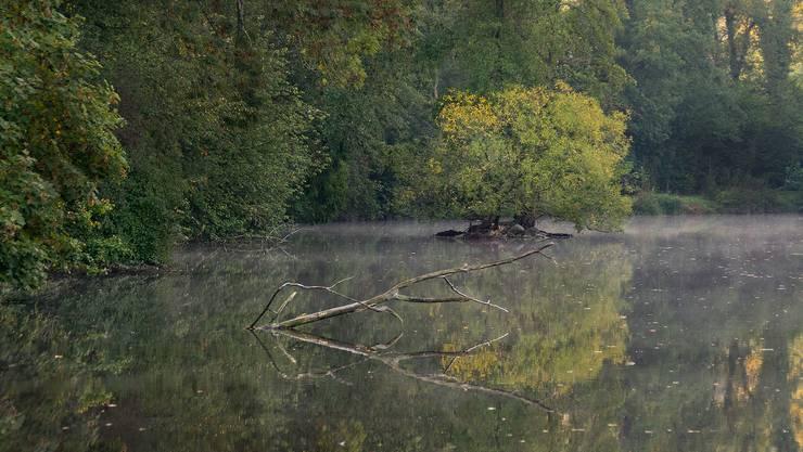 Marmoriweiher am Morgen 06:45