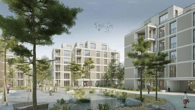 Visualisierung der geplanten Wohnsiedlung auf dem Menziker Hamburg-Areal mit Begegnungsplatz und Teich.