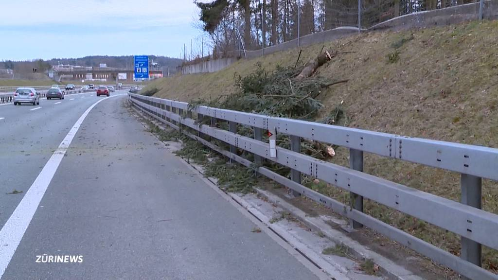 Windspitzen von fast 120 km/h: Sturmtief Luis fegt mit heftigen Böen über die Schweiz