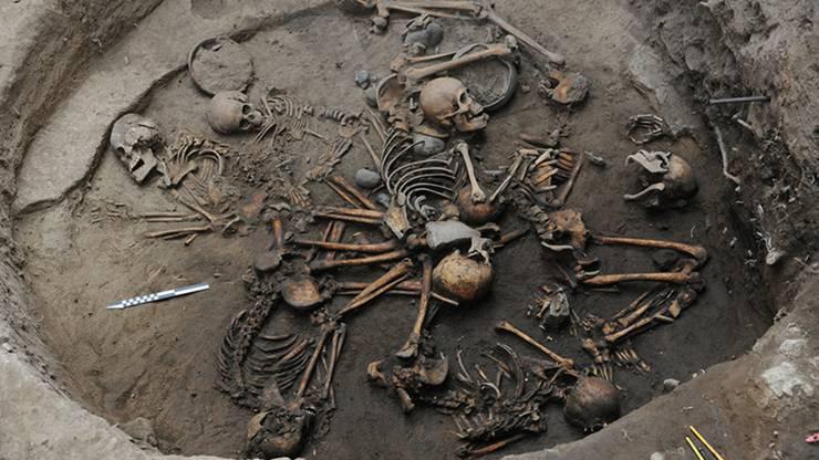 Die zehn Skelette wurden kunstvoll arrangiert.