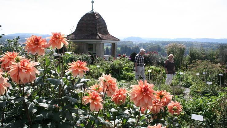Gartenanlage beim Schloss Wildegg