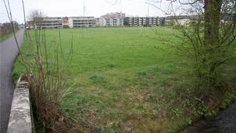 Vom Wildbach im Vordergrund bis zu den Häusern der Einsprecher soll viergeschossig gebaut werden dürfen.