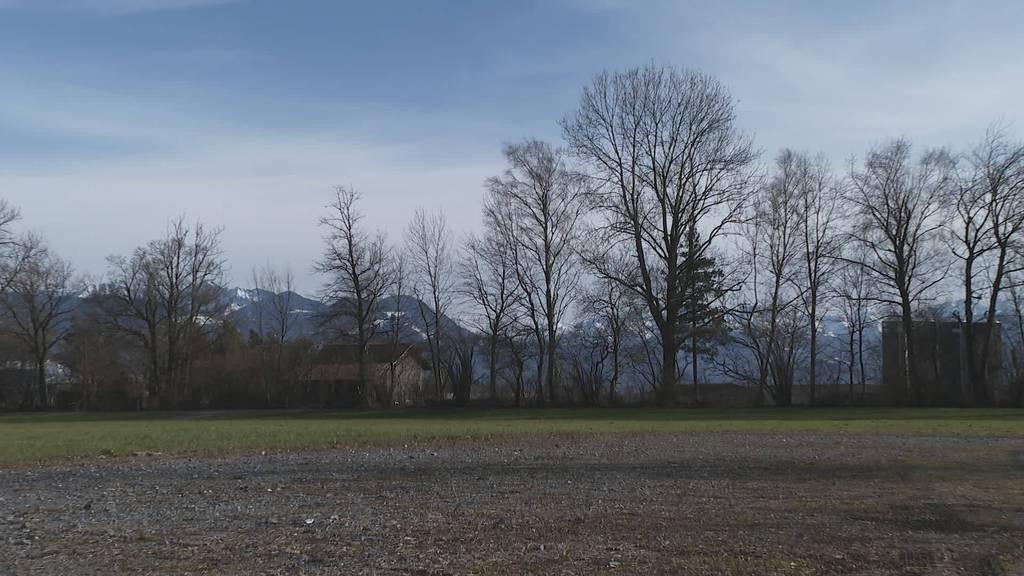Temporärer Übungsplatz: Auf Rhemagelände wird Feuer gelöscht