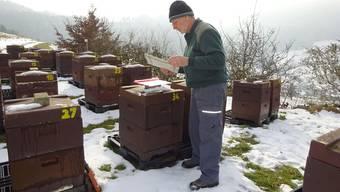 Regelmässig kontrolliert Imker Thomas Senn seine Bienenvölker. Dank dieser Kontrolle erkennt er frühzeitig einen Varroa-Befall und kann reagieren. Susanne Hörth