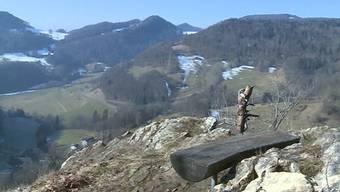 Die beiden Männer sollen in Erlinsbach dutzende Bäume illegal gefällt haben. In Aarau entschied der Richter heute gegen die beiden Baumfäller.