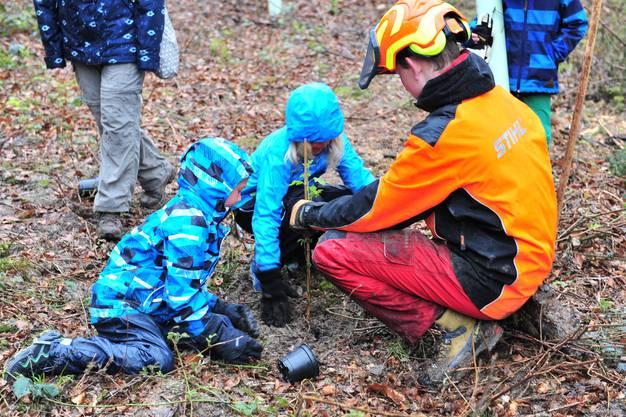 Nachdem der Setzling eingepflanzt ists, wird das Loch zugeschüttet und ein Schutzrohr darum gelegt.