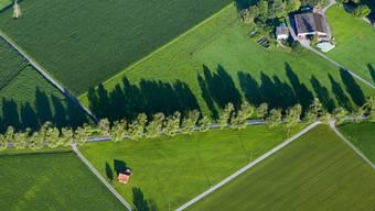Die landwirtschaftliche Nutzfläche sowie die Zahl der Betriebe und Beschäftigten im Kanton hat abgenommen. (Symbolbild)