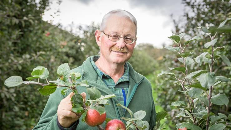 Meinrad Suter aus Münzlishausen: «Es gibt einen wunderbaren Äpfel-Herbst.» (Archiv)