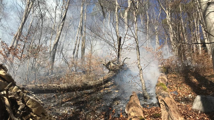 Das Feuer sei schnell unter Kontrolle gewesen