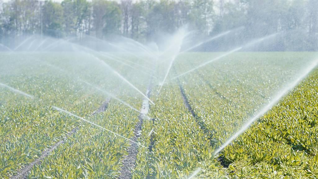 Die Wasserversorgung ist das zentrale Thema des geplanten Wasser- und Klimaforums in Willisau. (Symbolbild)