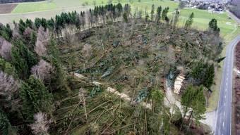 Das Sturmtief «Burglind» wütete in der ganzen Schweiz.