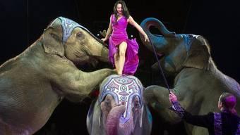 Elefantennummer im Zirkus Knie.