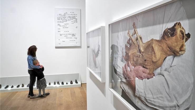 In Vitrinen und auf Bildern präsentiert Lois Weinberger das «Trümmerfeld» aus seinem Elternhaus.