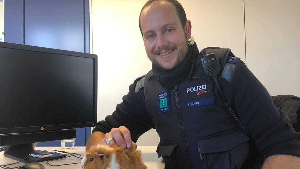 Hund führt Spaziergängerin zu Meerschweinchen – Polizei rettet es