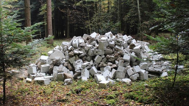 Am Donnerstag hat ein Landwirt diesen Haufen grauer Backsteine im Korporationswald Gemeinbirch entdeckt.