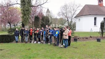 Sechstklässler setzten auf dem Mellinger Friedhof eine Hecke, die Insekten und Singvögel künftig Unterschlupf bietet. zvg