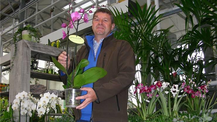 Paul Hediger will den Gewerbeverein pflegen, wie die Blumen in seinem Geschäft.Dieter Minder