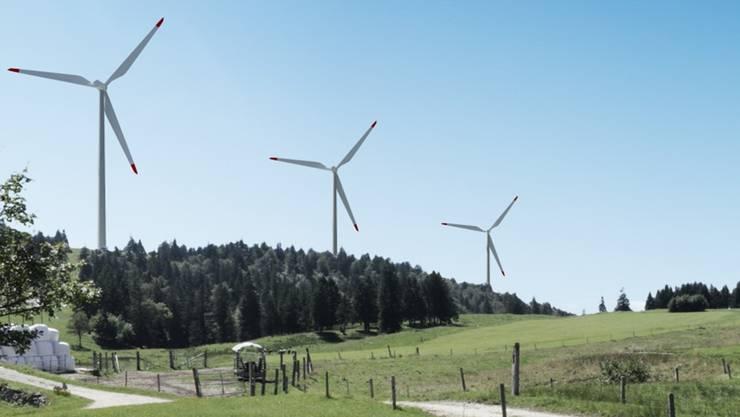 Die abgeblitzten Windpark-Gegner befürchten Verunreinigungen des Trinkwassers, Lärmbelästigungen und Felsstürze. (Visualisierung)