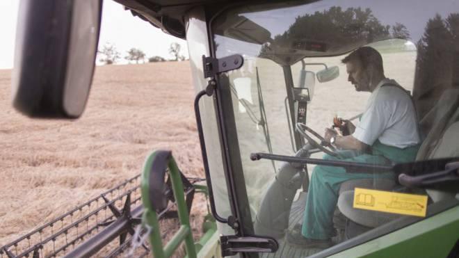 Vorläufig müssen sich Schweizer Bauern nicht vor der grossen Konkurrenz aus den USA fürchten. Foto: Keystone/Gaetan Bally