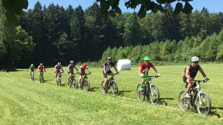 Mountainbike-Fahrer müssen im Freiamt weiter ohne GPS-Tracks auskommen.